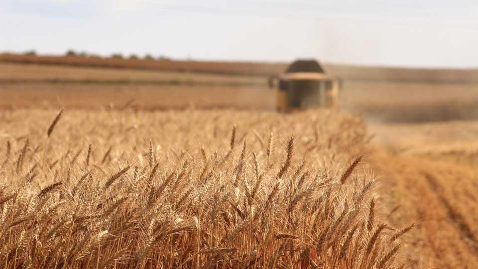 Face à la crise agricole: oser regarder autrement et s'interroger ensemble